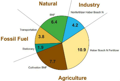 causes of soil pollution due to fertilizer Find out about the man-made and natural causes of soil pollution  pesticides and/or insecticides and fertilizers transportation activities, releasing toxic vehicle emissions chemical waste dumping,  this is possible due to the complex soil environment, involving the presence of other chemicals and natural conditions which may interact.